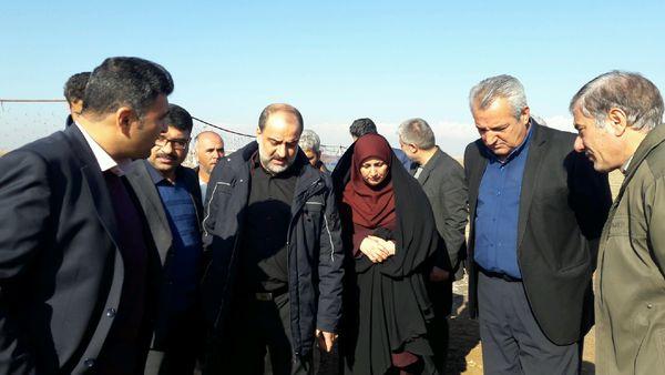 بازدید رئیس جهادکشاورزی استان قزوین از واحدهای تولیدی البرز