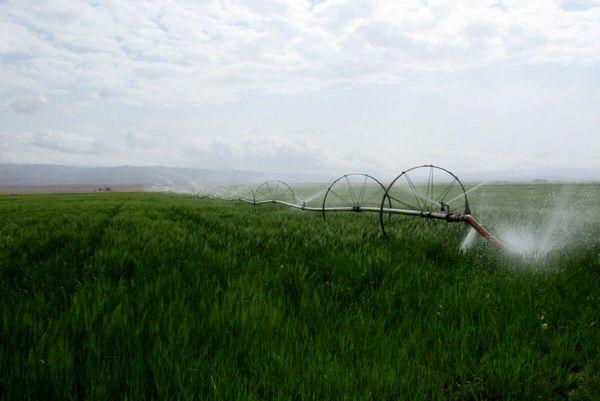 انجام ۹۰ درصد آبیاری نوین خراسان جنوبی از ابتدای دولت یازدهم