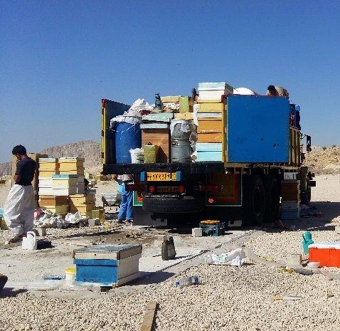 کوچ پائیزه زنبورستان ها به فراشبند آغاز شد