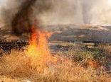 ۳۳ هکتار از مزارع ،مراتع و باغات ایوان در آتش سوخت