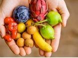 تدوین پیش نویس «سند امنیت پایدار غذایی»