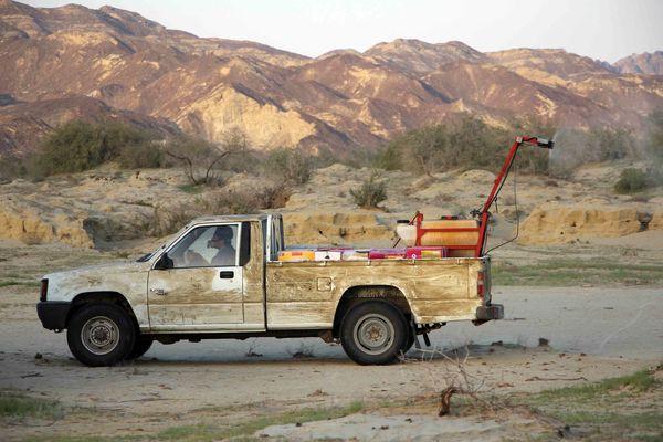 421 هکتار از مراتع سیستان وبلوچستان علیه ملخ صحرایی سمپاشی شد