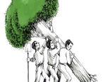 ریشه ها در فکر ریشه ها-کارتون فیروزه مظفری