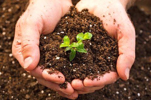 خاک حافظ منابع  آب است