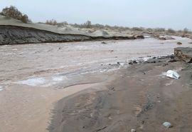 ۱۰میلیارد تومان خسارت سیلاب به کشاورزی و دامپروری شهرستان ریگان