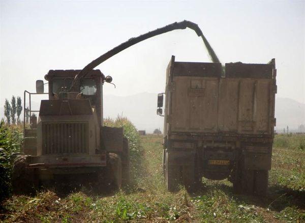 کسب رتبه برتر کشوری در ارتقاء درجه مکانیزاسیون گندم دیم در بخش کشاورزی استان زنجان