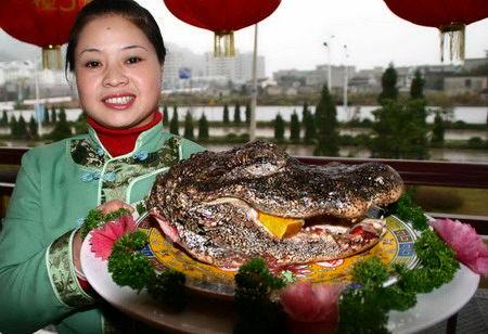 راهاندازی سیستم نظارت بر تولید مواد غذایی در چین