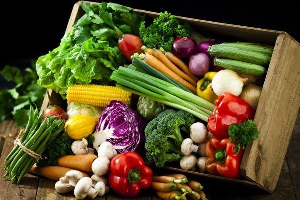 فقر ویتامینها و مواد معدنی در رژیمهای غذایی جهانی
