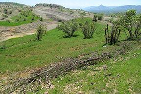 طرحهای آبخیزداری در هفت روستای بوئین زهرا اجرا شد