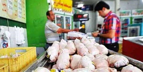 کاهش قیمت مرغ در اصفهان طی روزهای آینده با افزایش جوجهریزی