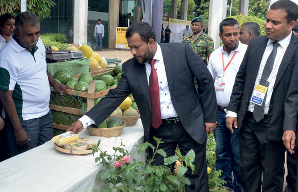40 درصد شرکت های کوچک و متوسط سریلانکایی درگیر در بخش صنعت غذا