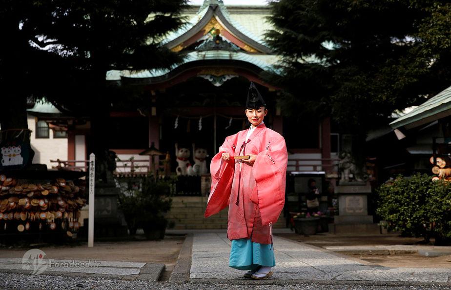 تومو ایچینو، 40 ساله، راهب شینتو، ژاپن