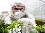 کلینیکهای گیاه پزشکی، بازوان توانمند حفظ نباتات در تولید محصولات زراعی و باغی