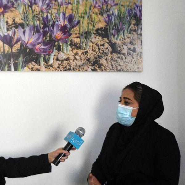 تغییر الگوی کشت و توسعه کاشت زعفران در فارس