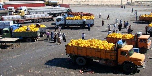 صادرات محصولات کشاورزی خراسان شمالی افزایش یافت