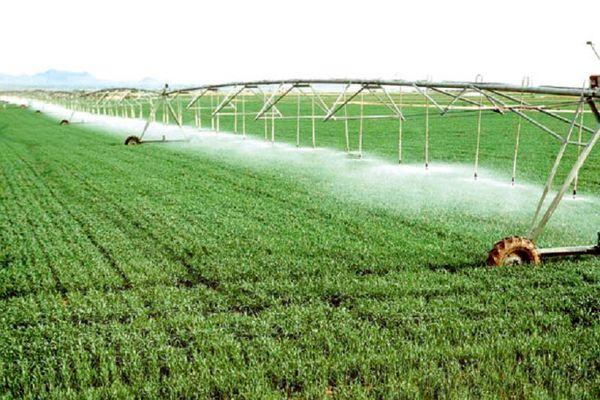 بهینهسازی مصرف آب با توسعه اراضی شیبدار به روش دیم