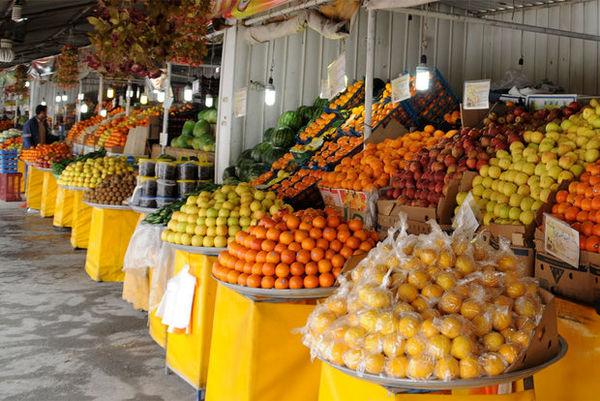 صادرات کشاورزی به تولید ویژه نیاز دارد