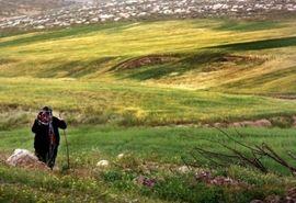 تخریب منابع طبیعی خراسان شمالی کمتر شد