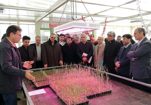 دو طرح موسسه تحقیقات کشاورزی در مراغه به بهرهبرداری رسید
