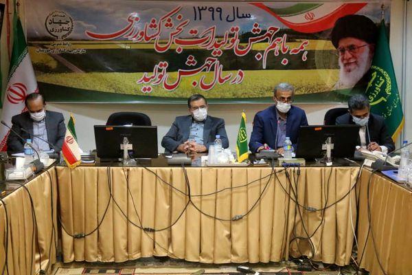 عملیاتی شدن کشت قراردادی کلزا در خوزستان