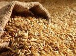 لزوم تسریع در فرآیند تحویل بذر به کشاورزان خوزستان