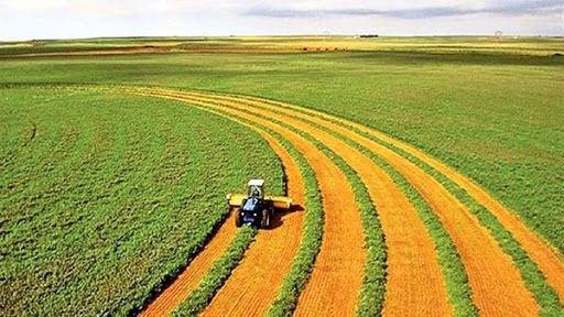 ۵۳۴ هزار هکتار از مزارع در قالب طرح جهش تولید در دیمزارها بیمه شدند