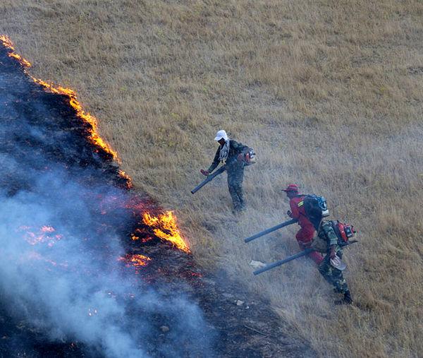 ۷۰۰ هکتار از اراضی ملی قزوین امسال دچار آتشسوزی شدند