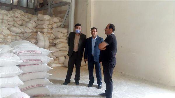 بازدید مدیر جهاد کشاورزی شهرستان شفت از کارخانه های خوراک طیور