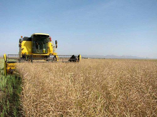 ۲۸۴۳ میلیارد ریال اعتبار به سازمان جهاد کشاورزی استان مرکزی ابلاغ شد