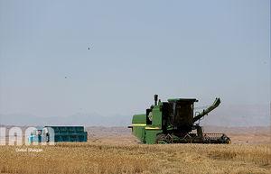 افزایش 2.8 میلیون تنی تولید محصولات کشاورزی