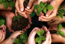 گسترش اشتغال پایدار از طریق شبکهسازی صندوقهای روستایی وعشایری
