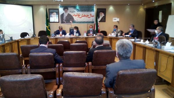 7000 هکتار از باغات خرما در کرمان در گیر آفت زنجره هستند