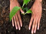 رونمایی از برنامههای نستله در راستای توسعه کشاورزی