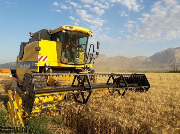 450 میلیارد تومان اعتبار برای تکمیل طرحهای کشاورزی استان ایلام نیاز است
