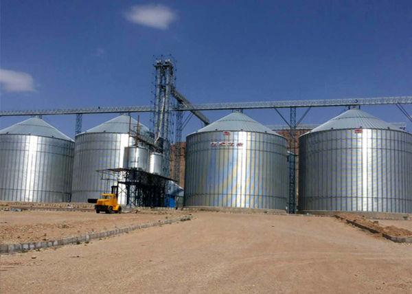 19 میلیون تن ظرفیت ذخیرهسازی  غلات ایجاد شده است