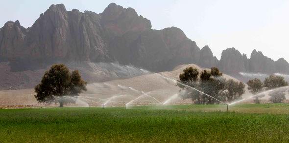 افزایش 4هزارهکتاری سیستم آبیاری نوین درشهرستان تفتان