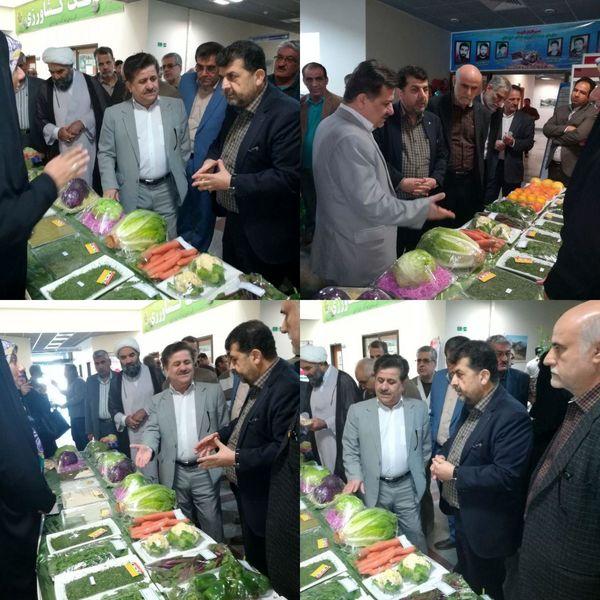 بازدید رییس سازمان جهاد کشاورزی خوزستان از نمایشگاه توانمندیها و دستاوردهای بخش کشاورزی
