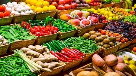 فراخوان شرکتهای دانش بنیان برای ارتقای امنیت غذایی کشور