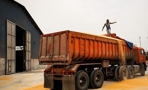 افزایش 50درصدی حمل کالاهای اساسی از بنادر