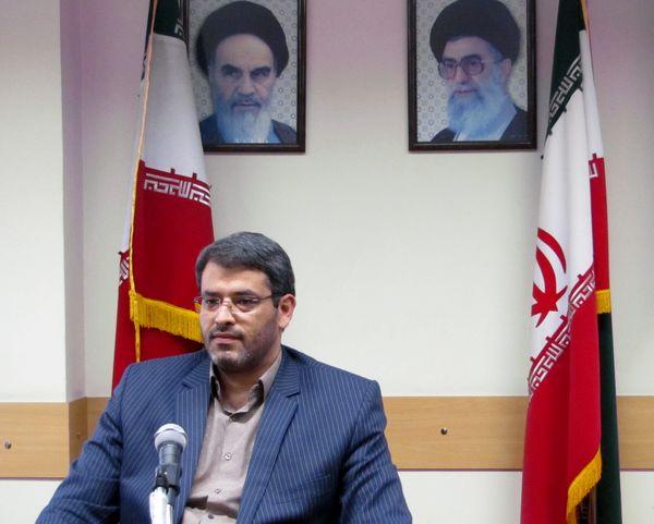 کشت بیش از 170 هکتار کلزا در شهرستان تهران