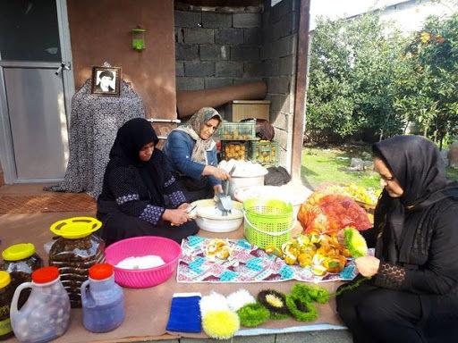 تشکیل صندوق اعتباری خرد زنان روستایی