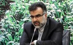 سهم 50 درصدی کشاورزی در اقتصاد فارس