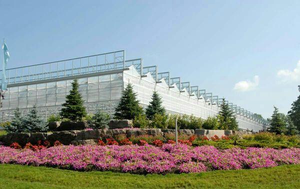 تولید سالانه 40 هزارتن انواع محصولات گلخانهای دربزرگترین مجتمع گلخانهای خاورمیانه در جلفا