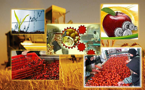 تورم 15.5 درصدی  زراعت، باغداری و دامداری سنتی سال ١٣٩٦