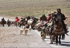مسیرهای کوچ عشایر استان سمنان ضدعفونی میشود