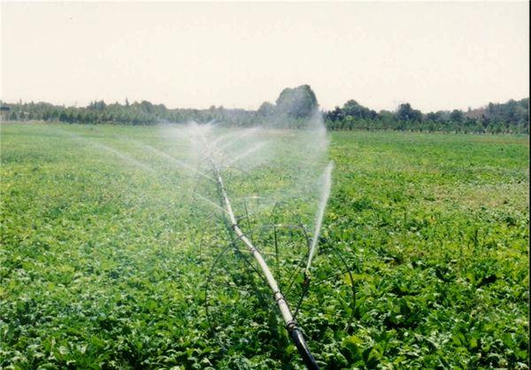 ضرورت مشارکت کشاورزان در طرحهای نیمهتمام سامانه نوین آبیاری