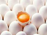 650 تن تخم مرغ در مرغداریهای شهرستان البرز تولید شد