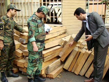 قاچاقچیان چوب زیر ذره بین پلیس و ماموران منابع طبیعی