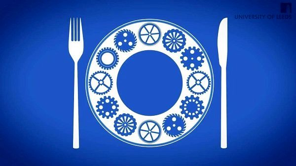 رشته بازاریابی و فروش صنایع غذایی در دانشگاهها ایجاد میشود