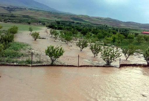 خسارت ۷۰ میلیارد تومانی سیل و تگرگ به بخش کشاورزی شهرستان اهر